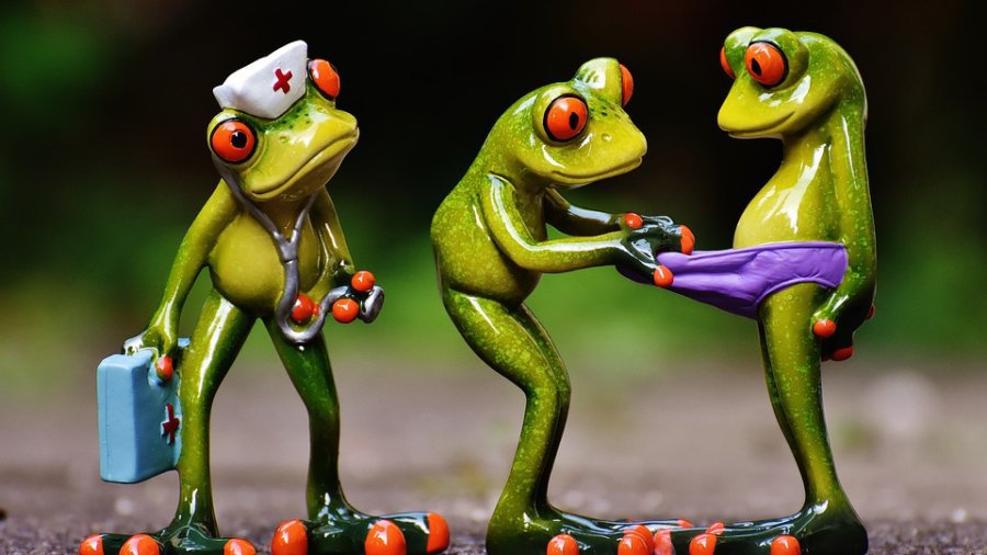 Nursing Frogs - Nursing Career